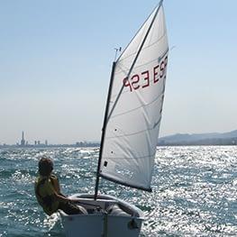 optimist zeil green quantum sails tot 46 kg