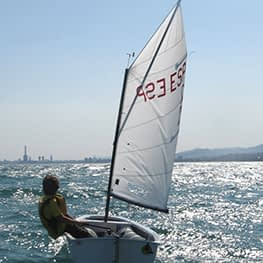 optimist zeil green quantum sails tot 46 kg